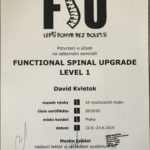 Functional spinal Level 1